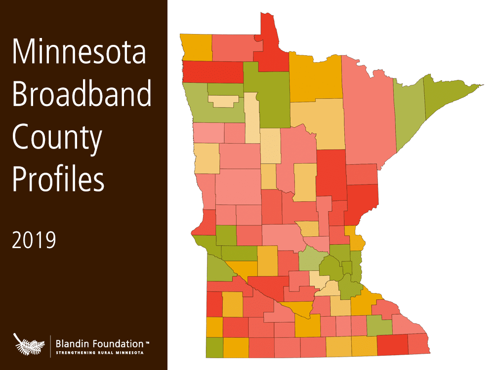 Cover image for profile PDF, showing title and Minnesota map graphic