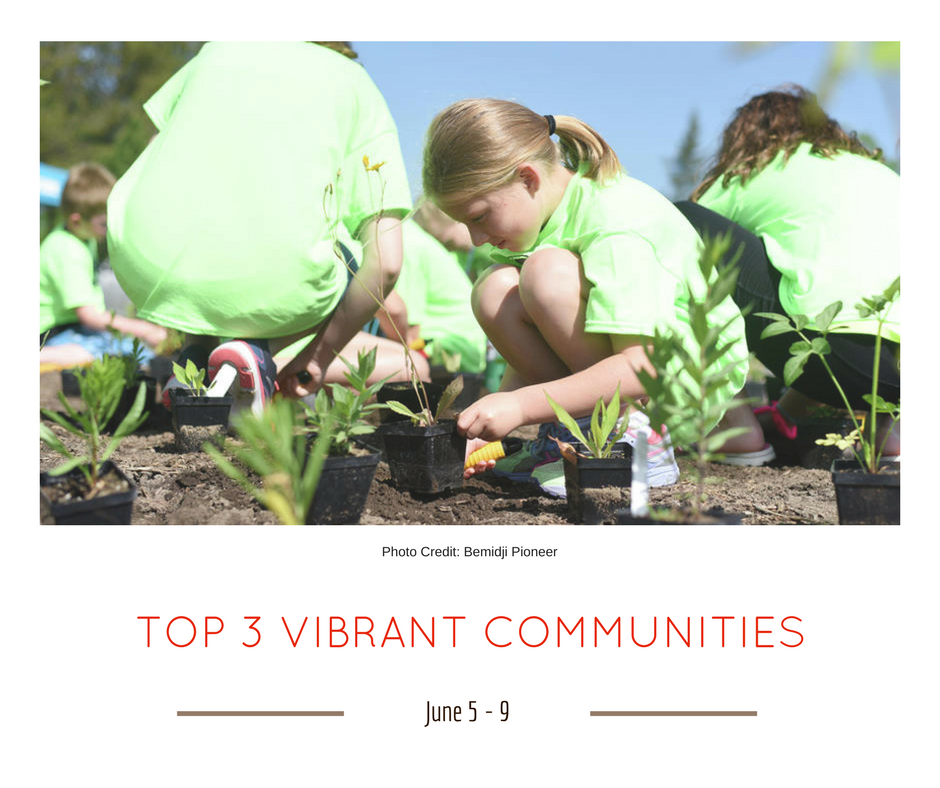 TOP 3 VIBRANT COMMUNITIES (17)